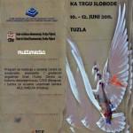 NPS Tuzla - Poster